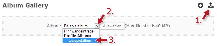 album-erstellen02